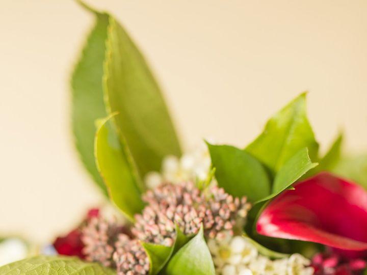 Tmx Shephard Wedding Trace Elements Photography 1 51 939628 160140360466946 Saint Johnsbury, VT wedding photography