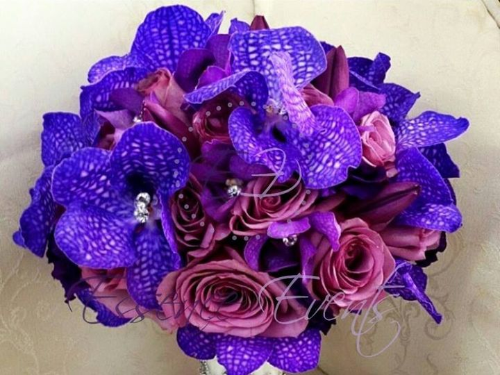 Tmx 1446749681739 Purple Wedding In Va 1 Raleigh, NC wedding eventproduction