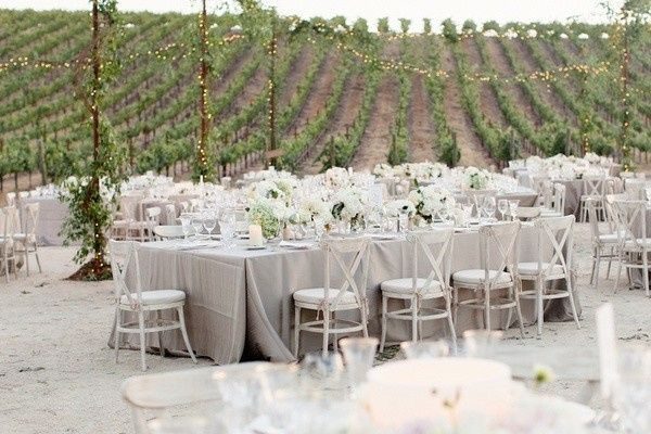 Vineyard reception