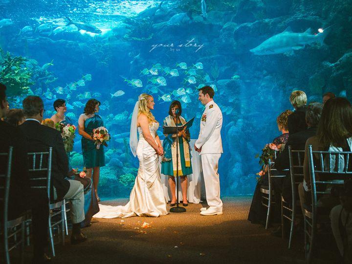 Tmx 1515083217559 Florida Aquarium Wedding 33 Venice, FL wedding officiant
