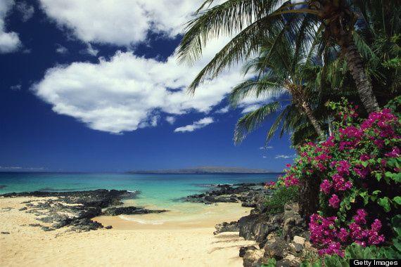 Tmx 1498422240953 Hawaii Marshfield wedding travel