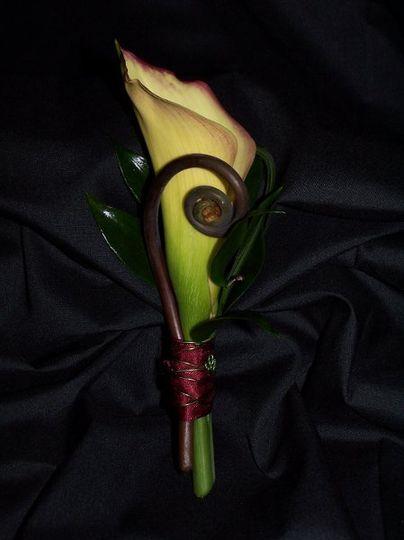 Bella studios inc flowers colorado springs co weddingwire 800x800 1283972717169 greenbouquet 800x800 1283972804466 callabout mightylinksfo