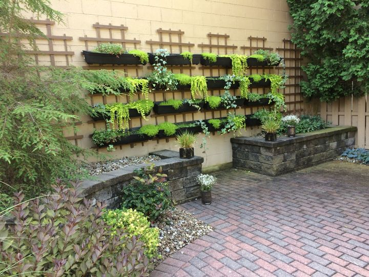 Our living wall - the perfect background for pictures