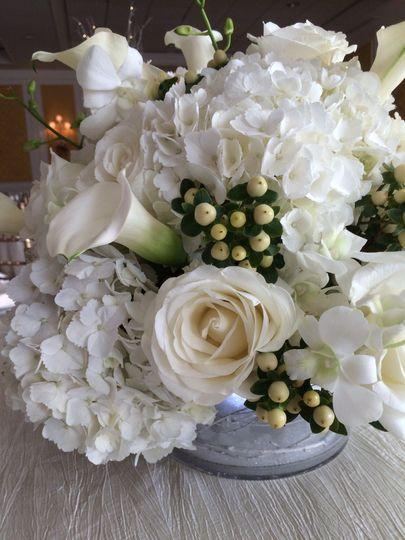 Wonderful winter white