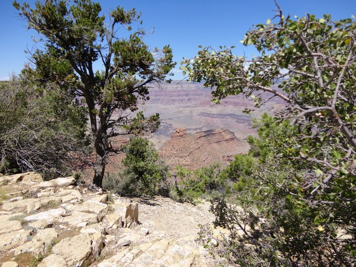 The Grand Canyon is the location for many weddings each year.