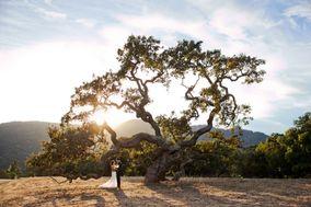 Lindsey Klinger Photography