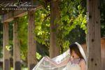 Mike Steelman Photographers, Wedding Photographer Carmel, Monterey, Santa Cruz, San Francisco image