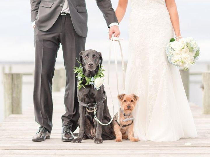 Tmx Scottweddinghighlights 372 Herrington On The Bay Maryland Wedding Photographer Anna Grace Photography Photo 51 1138 160763493161509 North Beach wedding venue