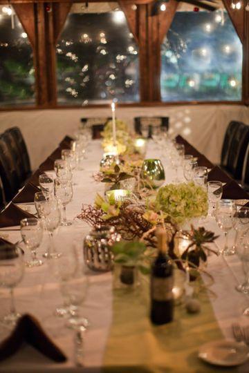 Elegant evening dinner