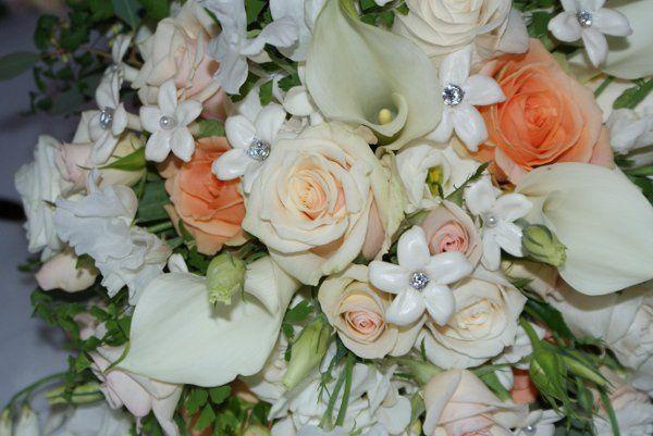 Tmx 1242680883253 DSC00263 Seattle wedding planner