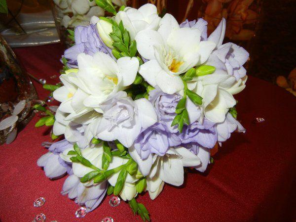 Tmx 1326316119653 BridalShowOct2011006 Franklin wedding florist