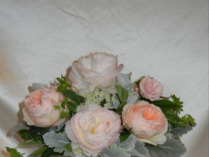 Tmx 1332958228389 DSCN0187 Franklin wedding florist