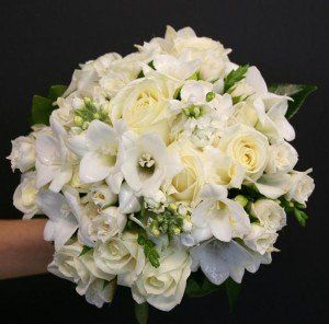Tmx 1341255341273 Wedding Franklin wedding florist