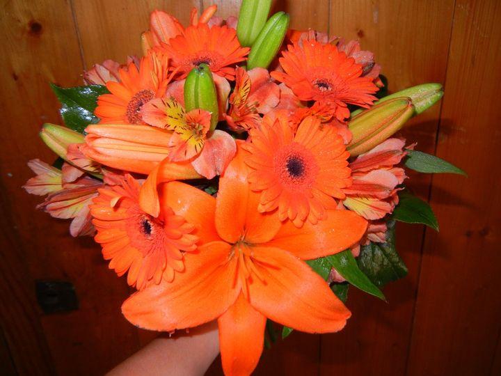 Tmx 1341255389359 Weddings016 Franklin wedding florist