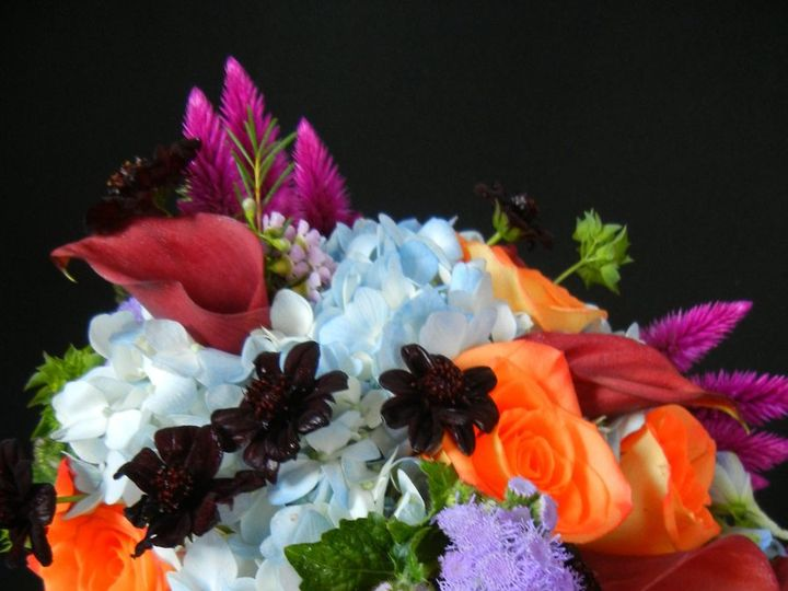 Tmx 1348674543054 Weddings128 Franklin wedding florist