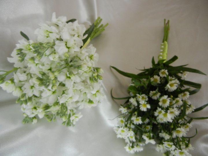 Tmx 1348674625752 Weddings105 Franklin wedding florist