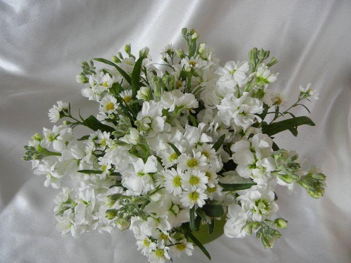 Tmx 1348675988160 Weddings107 Franklin wedding florist