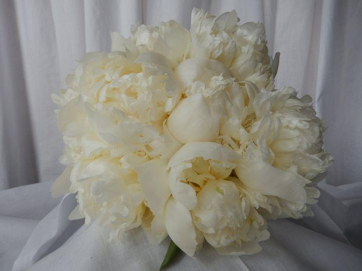 Tmx 1374000252356 Weddings 144 Franklin wedding florist