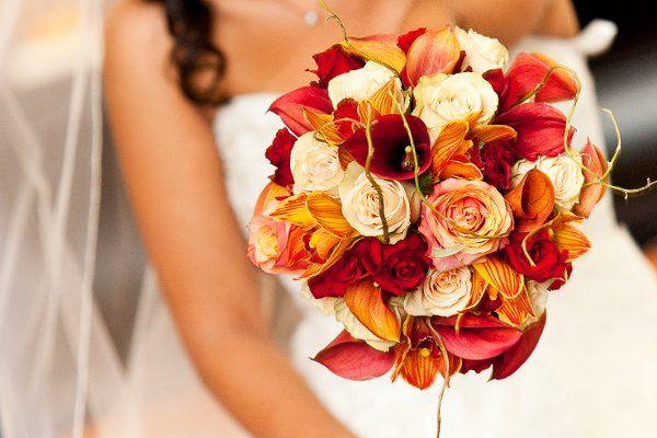 Tmx 1311113050745 Tula9 Reisterstown, MD wedding florist