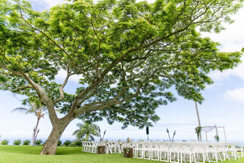 Great Lawn Daytime Ceremony