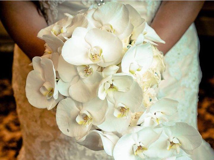 Tmx 1448223832830 Img4418 Brooklyn, NY wedding florist