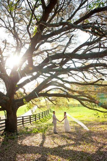 www OliviaMariePhotography comOMGOrlandoWeddingPhotographyMountDora2