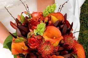 Ferretti Floral Designs