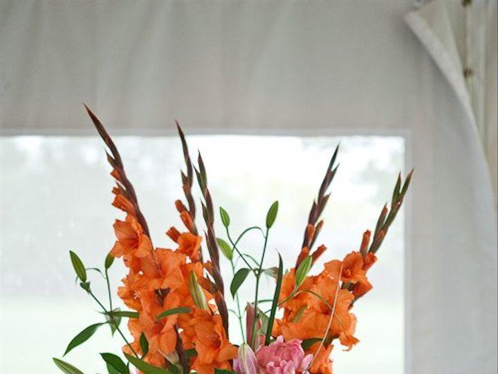 Tmx 1361642421406 Baluta0031 Hampton wedding florist