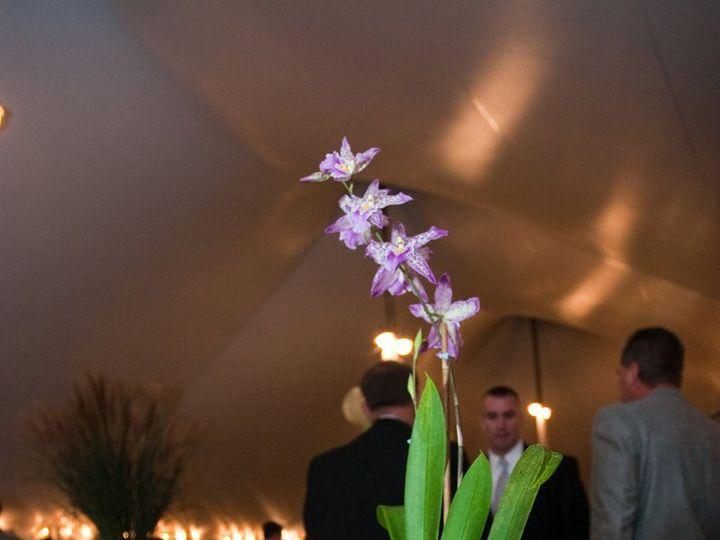 Tmx 1361643327588 Sawicki0092 Hampton wedding florist