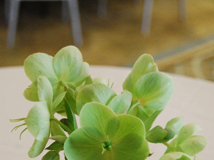 Tmx 1366915365094 Shop Photos Spring 2012 202 Hampton wedding florist