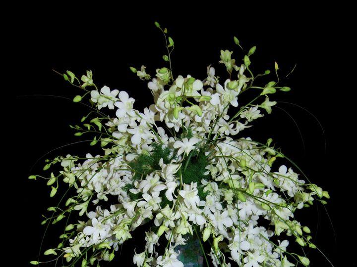 Tmx 1370113451378 Dsc0513 Hampton wedding florist