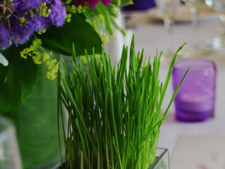 Tmx 1379012094259 Dsc1314 Hampton wedding florist