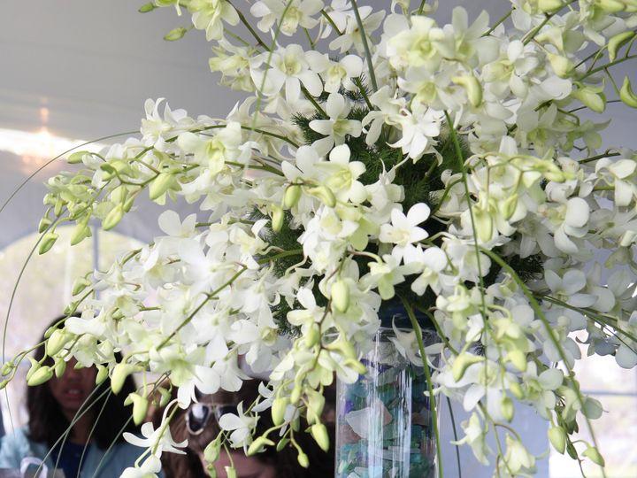 Tmx 1393692550164 Christine031 Hampton wedding florist