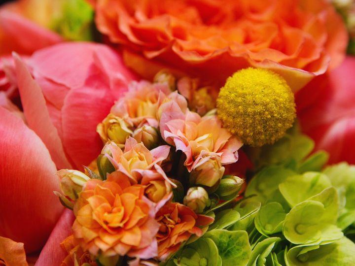 Tmx 1468424829215 Img5679 2 Hampton wedding florist