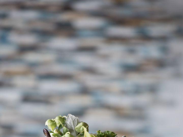 Tmx 1469048899886 16 Hampton wedding florist