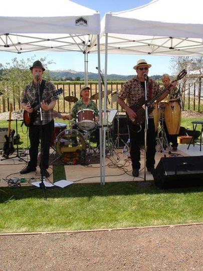 The Manzanita Band at a Winery Performance in Sonoma County