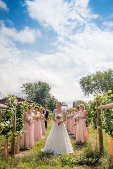 Bide in white and bridesmaids in pink