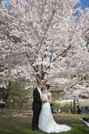Springtime in Central Park.