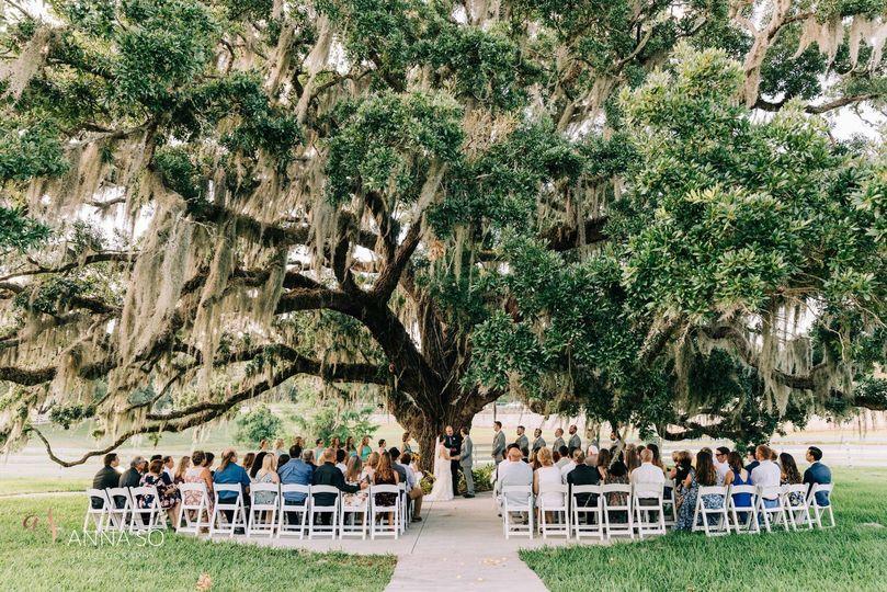 Ceremony - Oak Tree
