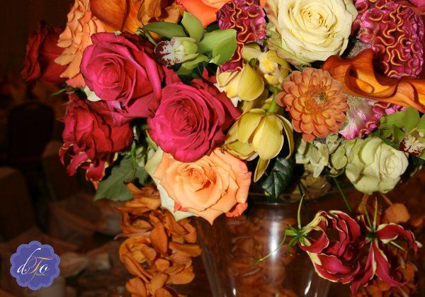 Debbie Turner Originals / DTO Flowers, LLC