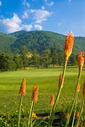 Tmx 1397142743364 Golfpi Maggie Valley, NC wedding venue