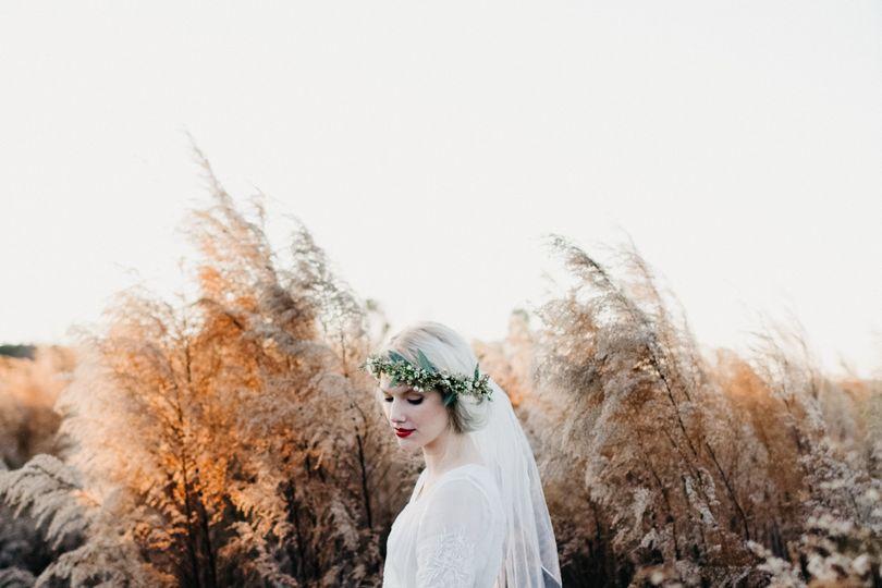 weddingwire 3623