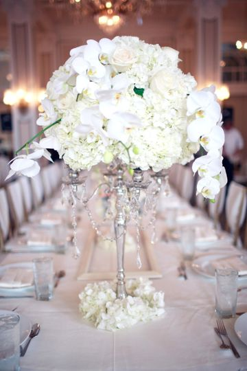 avina wedding 3