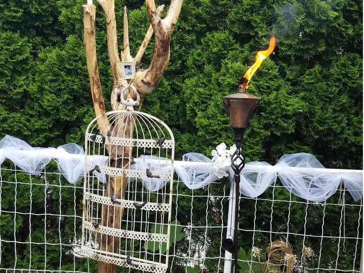 Tmx 1468689772623 Bird Cage Hoboken wedding officiant