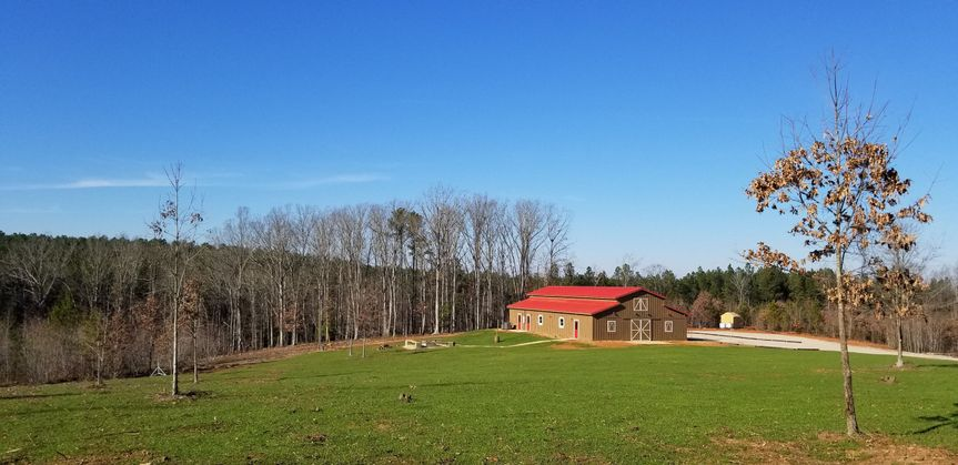 Our stunning barn located on 12 acres next to a gorgeous hardwood stand