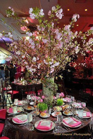 Tmx 1334939760703 Bloomingbranches New Rochelle wedding florist