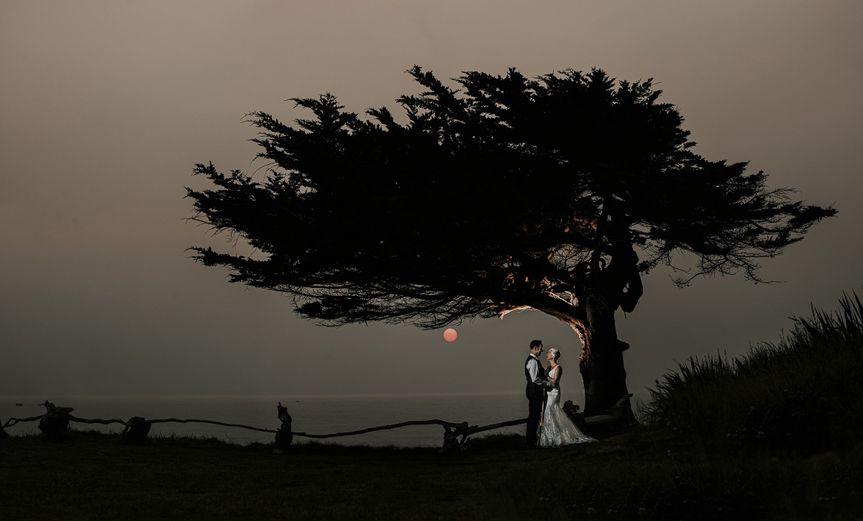 amanda garth pano cypress