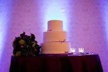 Tmx 1371485298430 Cake O Fallon wedding dj