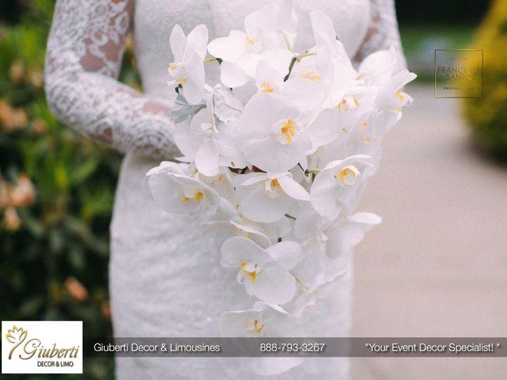 Tmx 1512507567044 Marcelle Facebook 8 Framingham wedding transportation