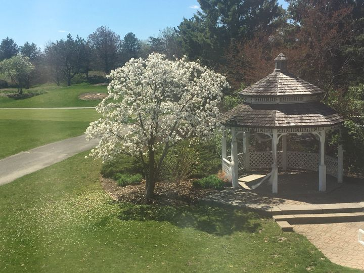 Tmx Gazebo Tree 51 15248 158413221850268 Lemont, IL wedding venue